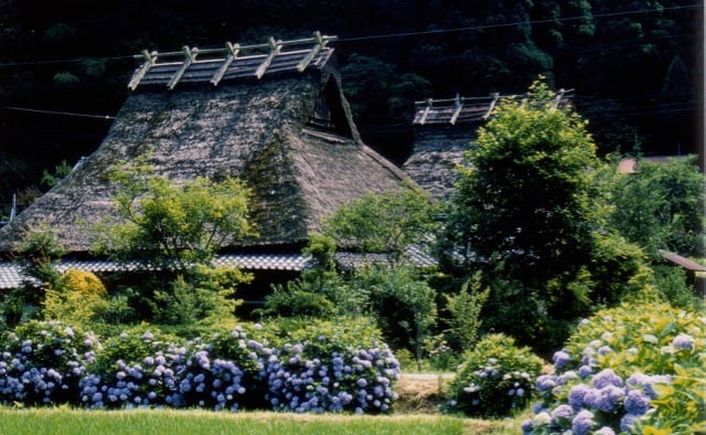 Miyama's culture of thatch