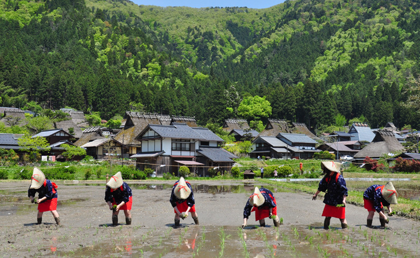 Rice Planting Festival in Thatched Village (kayabuki-no-sato)